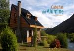 Cabañas del Aluminé
